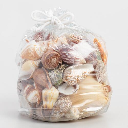 Bag of Large Sea Shells