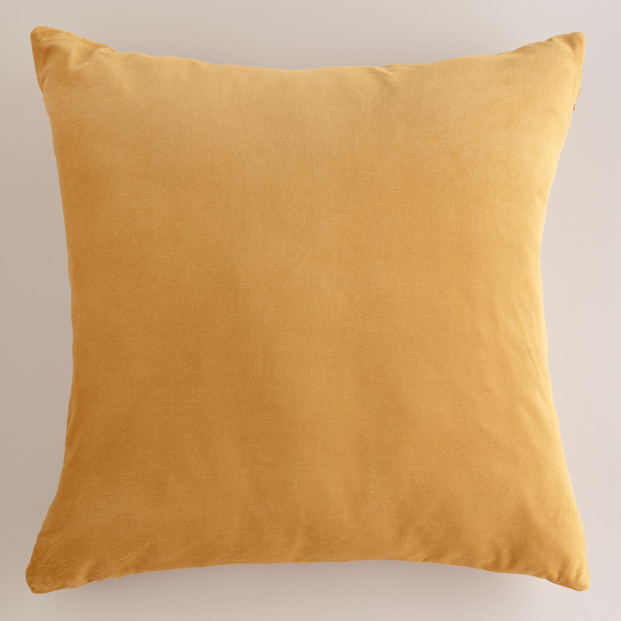 Throw Pillows Velvet : Amber Velvet Throw Pillows World Market