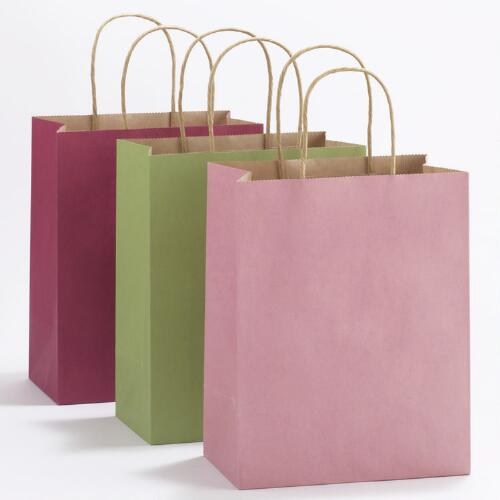Pink, Green & Fuchsia Medium Kraft Gift Bags, Set of 6