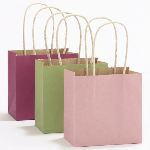 Pink, Fuchsia & Green Mini Kraft Gift Bags, Set of 6