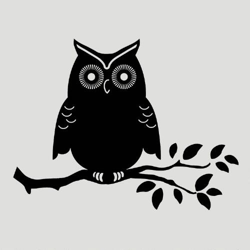 Owl Wall Decal & Chalkboard