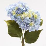 Blue Hydrangeas, Set of 2
