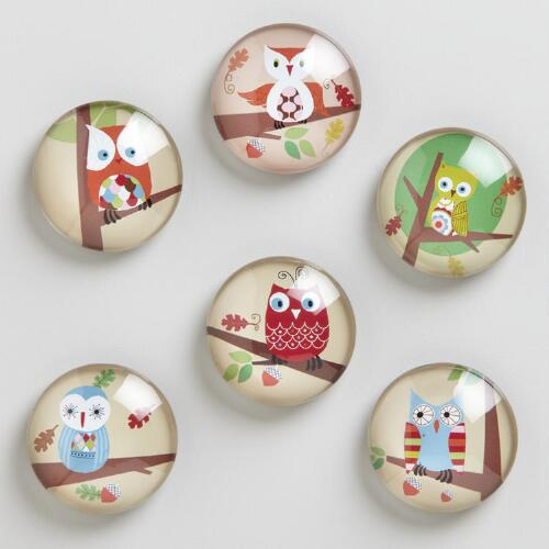 Owl Magnets, Set of 6