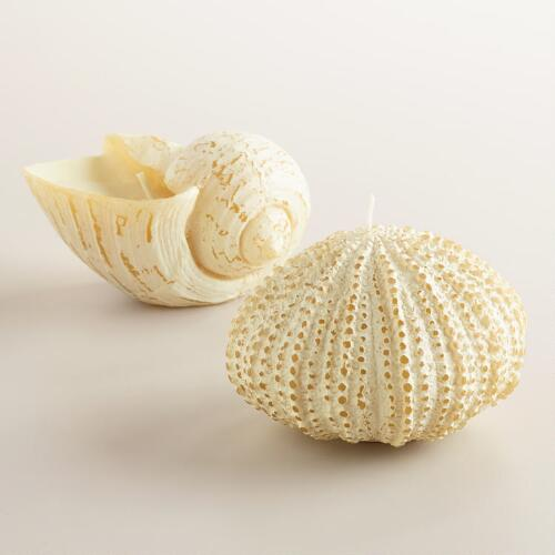 Whitewashed Shell and Urchin Candles, Set of 2