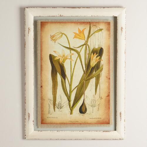 Yellow Lily Framed Wall Art