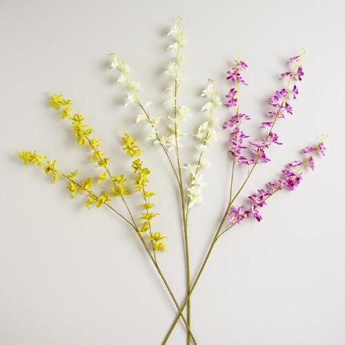 Dancing Orchid Stems, Set of 3