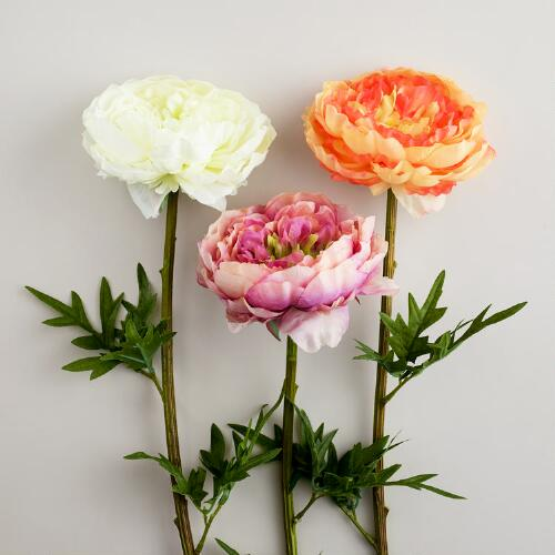 Cabbage Rose Stems, Set of 3