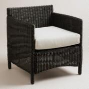 Dillon All-Weather Wicker Occasional Armchair with Cushion