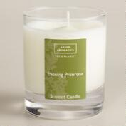 Arran Aromatics Evening Primrose Boxed Candle