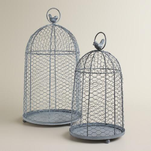 Wire Cloche with Bird Decor