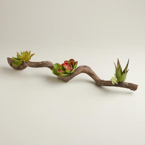 Succulent Branch Decor