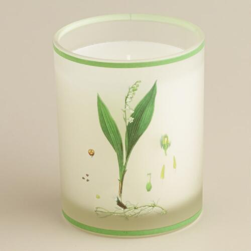Lily of the Valley Botanical Boxed Candle