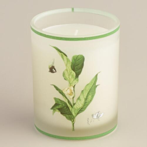 Magnolia Lily Botanical Boxed Candle