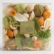 Spanish Citrus Box Potpourri