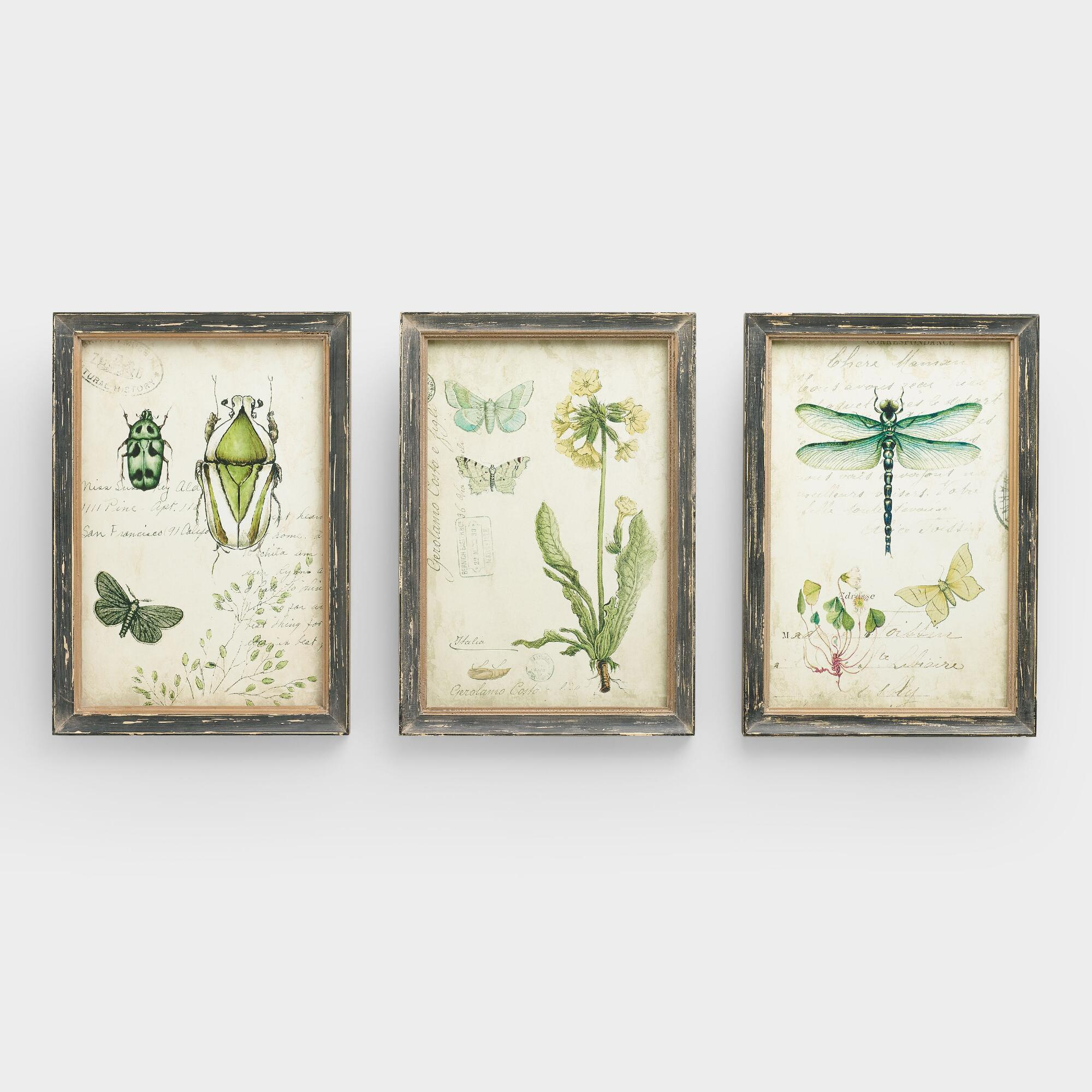 curiosities wall art set of 3 world market