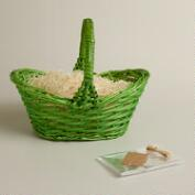 Lime Green Gift Easter Basket Kit