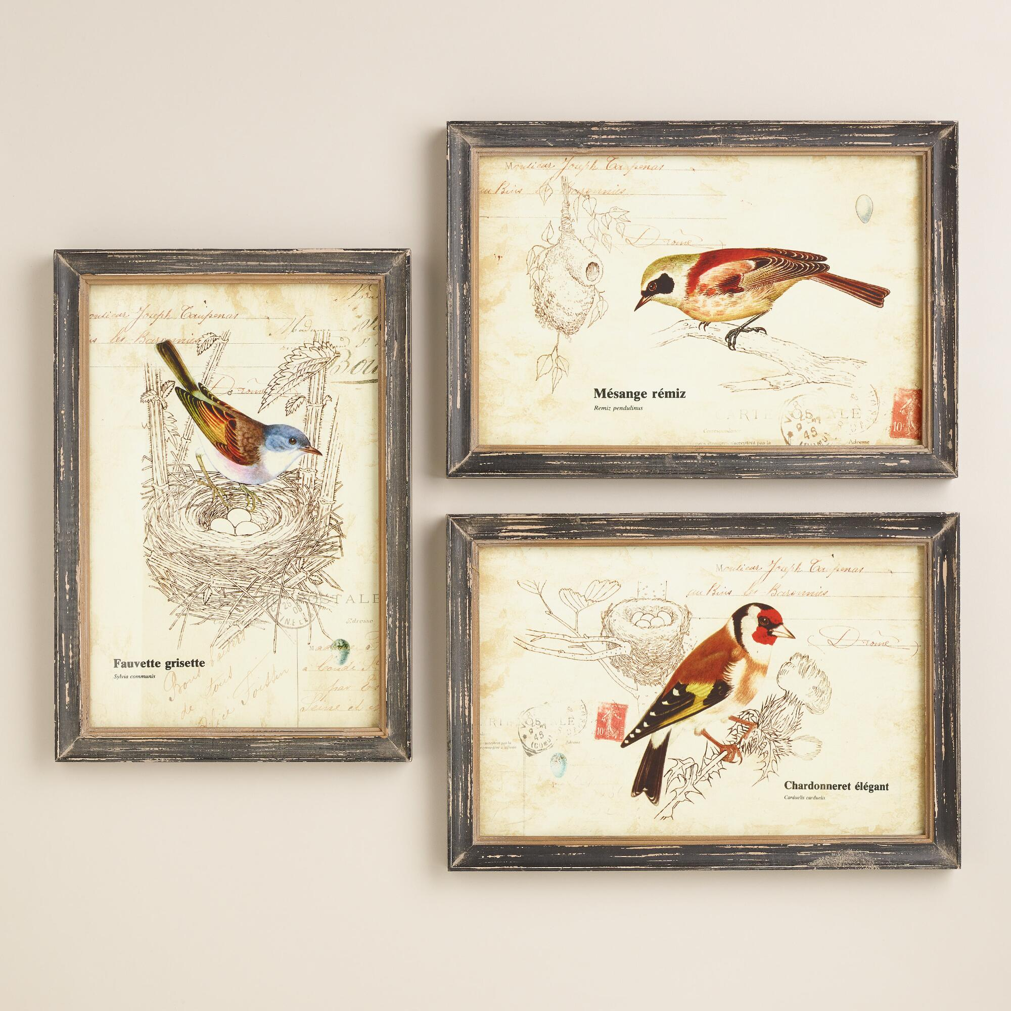 Nature birds wall art set of 3 world market for Bird wall art