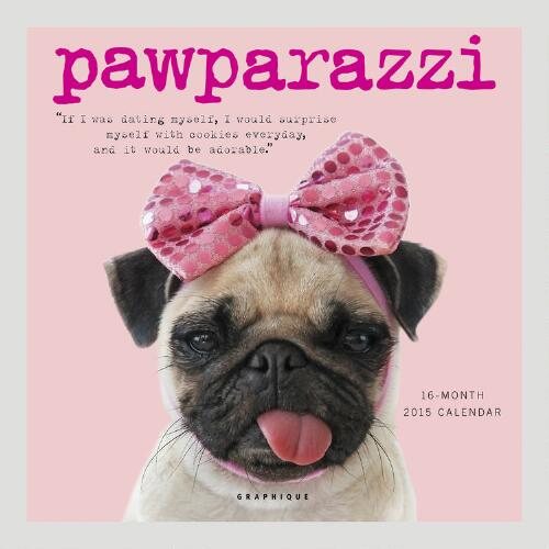 Pawparazzi 12-Month Wall Calendar