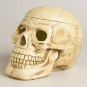 Paper Pulp  Skull Container