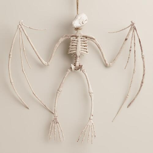 Hanging Dinosaur Skeleton