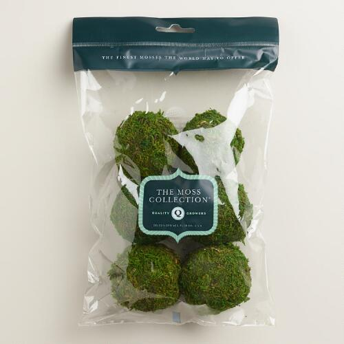 Moss Ball Vase Fillers, 6-Pack