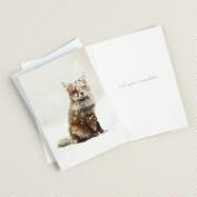 Snow Fox Boxed Holiday Cards, Set of 20