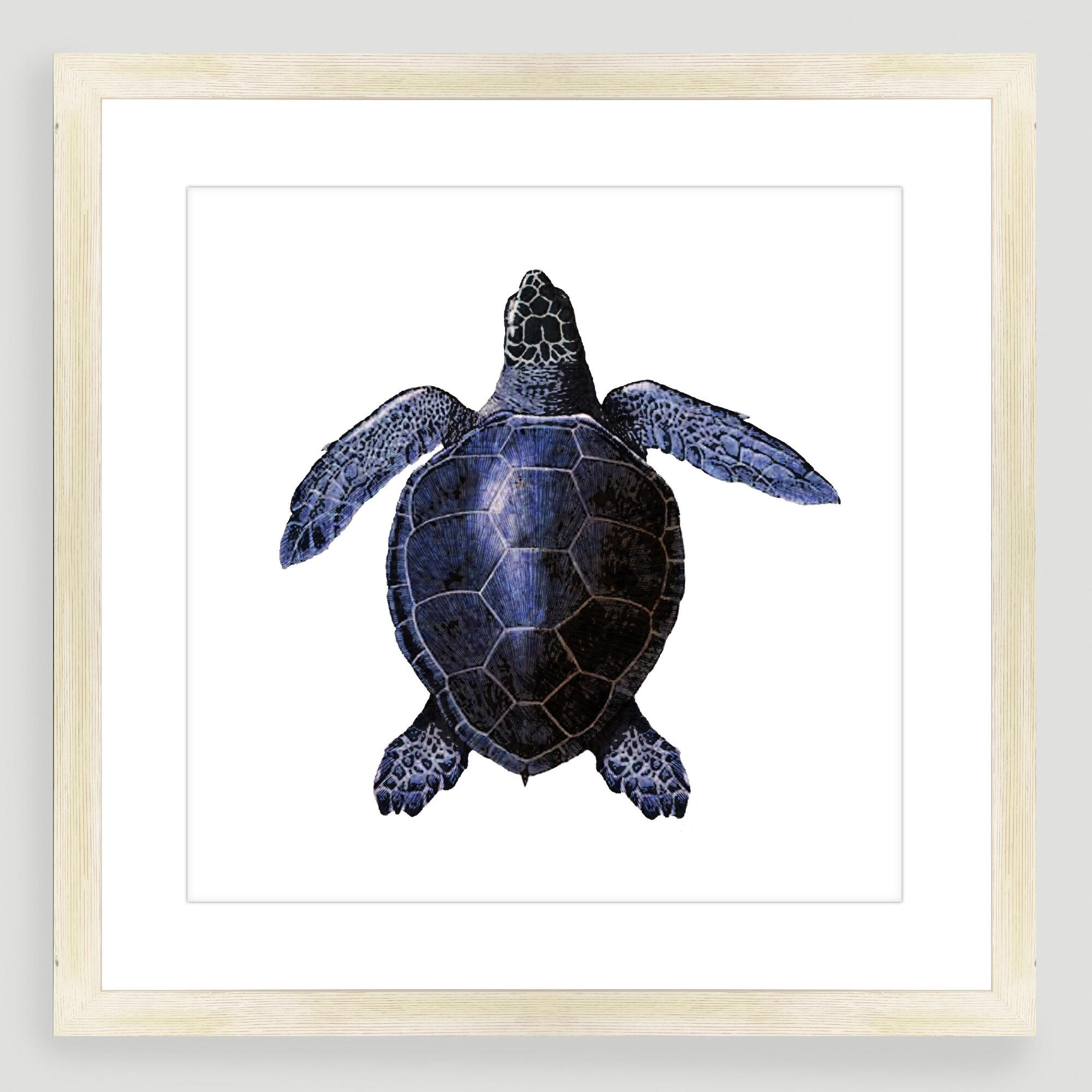 Vintage style turtle sea life wall art world market - Vintage inspired wall art ...