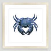 Vintage-Style Crab Sea Life Wall Art