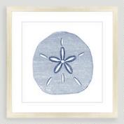 Vintage-Style Sand Dollar Sea Life Wall Art