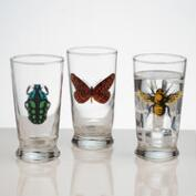 Insect Glass Tumblers, Set of 3