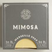 French Boxed Mimosa Bar Soaps, Set of 2