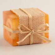 Grapefruit Tangerine Loofah Bar Soaps, Set of 2
