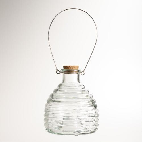 Clear Glass Wasp Catcher