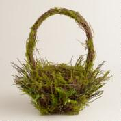 Square Mossy Basket With Handle