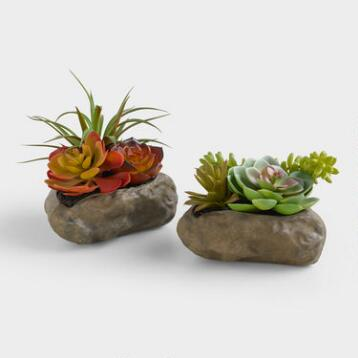 Faux Succulents with Rocks, Set of 2