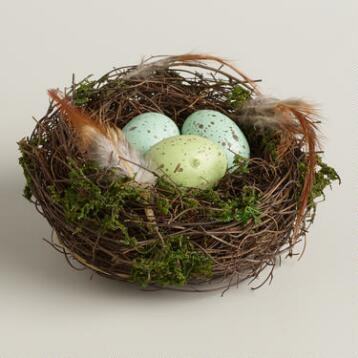 Blue and Green Egg Nest