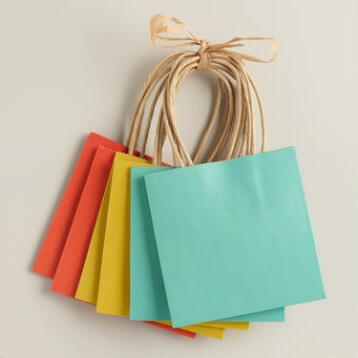 Mini Spring Kraft Gift Bags, Set of 2