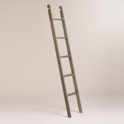 Gray Augustus Bookshelf Ladder