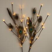 Peacock Feather Branch LED Lights
