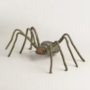 Mummy Spider