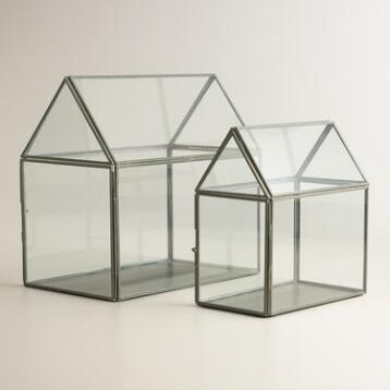 Glass House Terrariums
