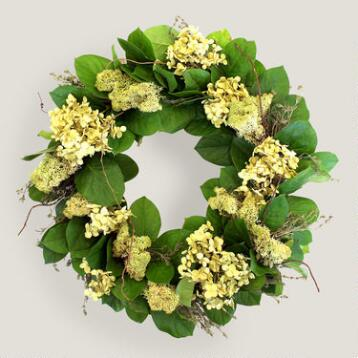 Live Hydrangea and Salal Wreath