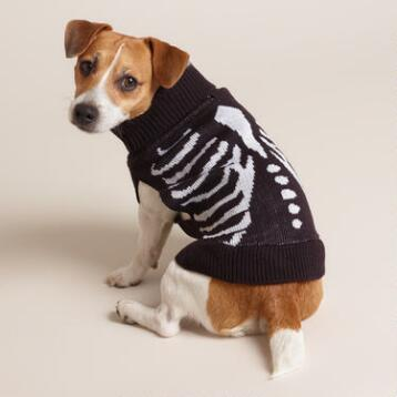 Small Skeleton Knit Dog Sweater