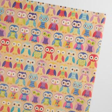Birthday Owls Kraft Wrapping Paper Roll