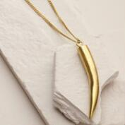 Gold Pembe Horn Pendant Necklace