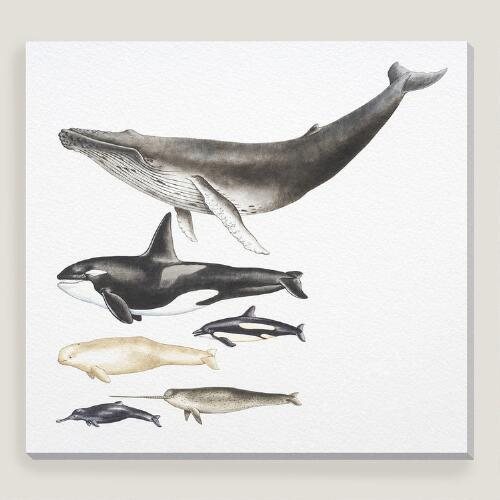 Whales Wall Art