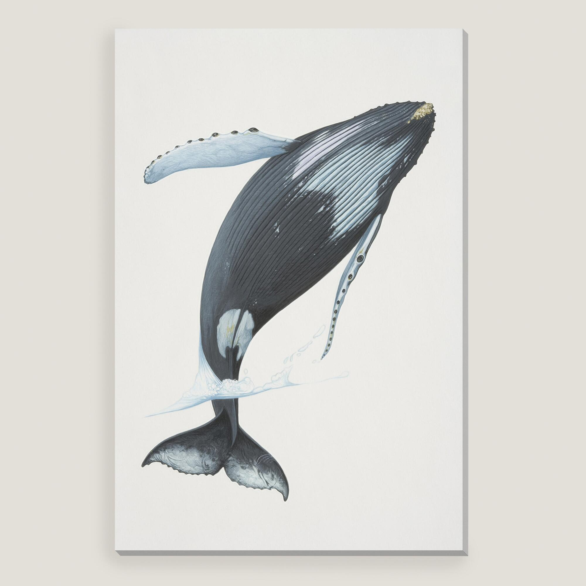 Humpback Whale Wall Art World Market