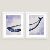 Framed Whale Wall Art Set of Two