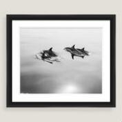 Family Swim Framed Shadowbox Wall Art