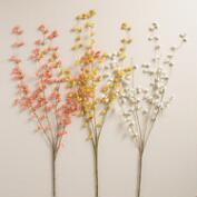Waxflower Stems Set of 3